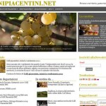 Vinipiacentini.net, dal 2004 insieme ai vignaioli piacentini