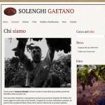 Rinnovato il sito di Gaetano Solenghi