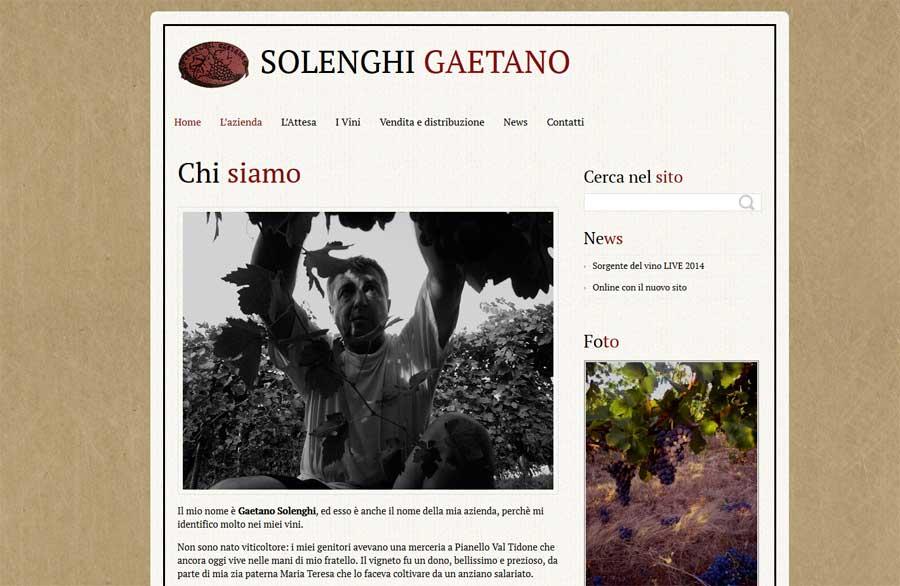 Home page sito Gaetano Solenghi