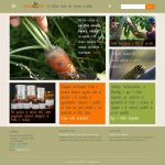 Sito web responsive per Erbucchio