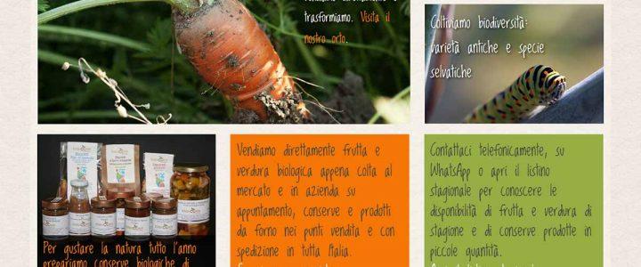 home page sito web erbucchio